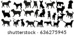 vector  a collection of dog... | Shutterstock .eps vector #636275945