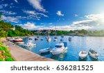 wonderful romantic summer... | Shutterstock . vector #636281525