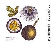 dark purple passion fruit  hand ... | Shutterstock .eps vector #636386486