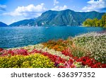 mountain sea. mountain flowers... | Shutterstock . vector #636397352