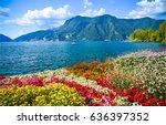 mountain sea. mountain flowers... | Shutterstock . vector #636397352