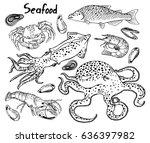 seafood. live octopus  squid ... | Shutterstock .eps vector #636397982
