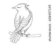 bird sitting on branch  line... | Shutterstock .eps vector #636457145