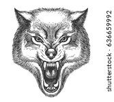 hand drawn wolf head in sketch... | Shutterstock . vector #636659992