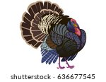 turkey bird | Shutterstock . vector #636677545