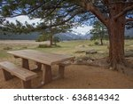 Picnic Table Under A Tree With...