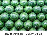 Big Sweet Green Watermelons...