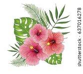 hibiscus painted illustration  | Shutterstock . vector #637016278