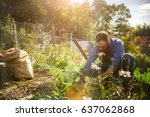 Small photo of man planting crops in communal garden shot with lens flare