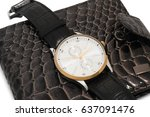 watch on wallet  | Shutterstock . vector #637091476