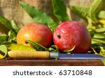 Two mangoes fruits and knife. - stock photo