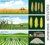 set of agricultural fields ... | Shutterstock .eps vector #637117252