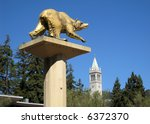 University Campus UC Berkeley, California, with golden bear and campanile visible. - stock photo