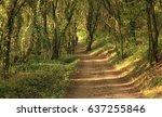 way of st.james camino... | Shutterstock . vector #637255846