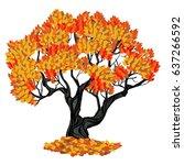 deciduous tree  oak in the... | Shutterstock .eps vector #637266592