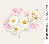 daisies illustration with... | Shutterstock .eps vector #637284745