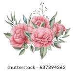 hand painted watercolor... | Shutterstock . vector #637394362