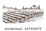 rows of vineyard grape plants... | Shutterstock .eps vector #637435675