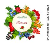 wild berries and wildberry... | Shutterstock .eps vector #637534825