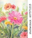 garden flowers background in... | Shutterstock . vector #637571215