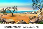 Rocky Shore With Lonely Tree...