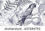 flowers and birds seamless... | Shutterstock .eps vector #637684792