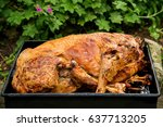 traditional roasted in a... | Shutterstock . vector #637713205