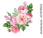 watercolor bouquet of roses | Shutterstock . vector #637878022