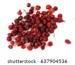 dry rosehips berries isolated... | Shutterstock . vector #637904536