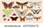 set of insects | Shutterstock .eps vector #637920172