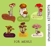 colored mushroom set in... | Shutterstock .eps vector #637983976