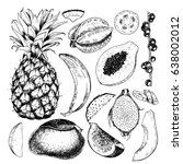 vector hand drawn exotic fruits.... | Shutterstock .eps vector #638002012