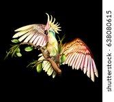illustration of parrot cockatoo ... | Shutterstock .eps vector #638080615