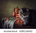 Fruit Still Life With A Cat