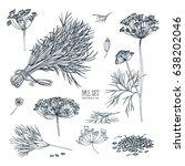 dill set. hand drawn sketch... | Shutterstock .eps vector #638202046