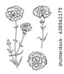 vector collection set of... | Shutterstock .eps vector #638562175