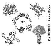 set of flowers hand drawn... | Shutterstock .eps vector #638645026