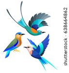 Stock vector stylized birds abyssinian indian and blue bellied roller 638664862