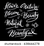 nature and blossom flower hand... | Shutterstock .eps vector #638666278