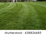 fresh cut lawn with beautiful... | Shutterstock . vector #638826685