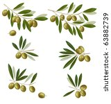 green olive branch. photo... | Shutterstock .eps vector #63882739