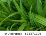 green leaves for background  | Shutterstock . vector #638871106