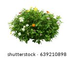 flower bush tree isolated... | Shutterstock . vector #639210898