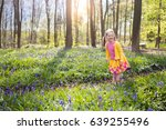 Child With Bluebells. Little...
