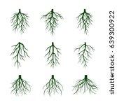 set of green roots. vector... | Shutterstock .eps vector #639300922