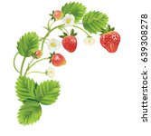 strawberry with leave  water... | Shutterstock .eps vector #639308278