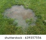 water puddle in green lawn | Shutterstock . vector #639357556
