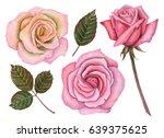 watercolor set of roses  hand... | Shutterstock . vector #639375625