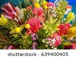 blue mountains  australia ... | Shutterstock . vector #639400405