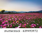 sunset in the mountains... | Shutterstock . vector #639493972